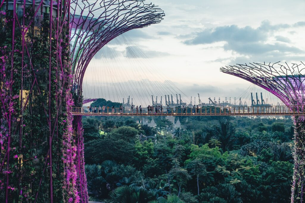 aerial photograph of Garden by the bay in Singapore